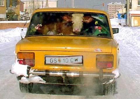 Натовари автомобила си добре!