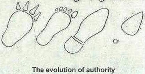 Еволюция, различни аспекти
